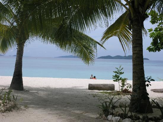 Banana Island: Malcapuya Island, Coron