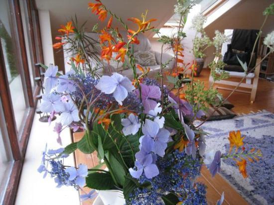 Hagal Healing Farm: Flowers in the meditation/sitting room
