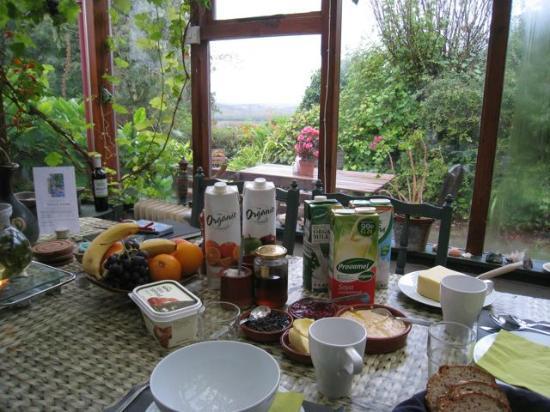 Hagal Healing Farm: Breakfast table in the grape-lined sunroom