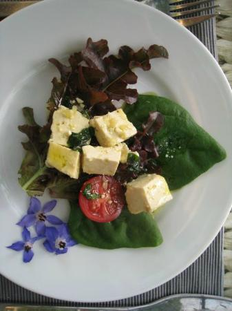 Hagal Healing Farm: Delicious starter to our dinner