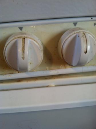 Elkhorn Lodge Chama: stove