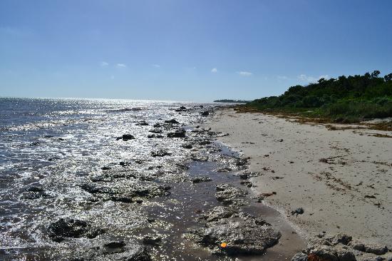 Bahia Honda State Park and Beach: beach rocky side