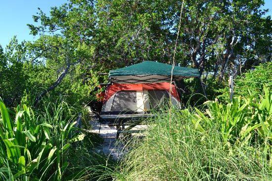 Bahia Honda State Park and Beach: bahia honda site