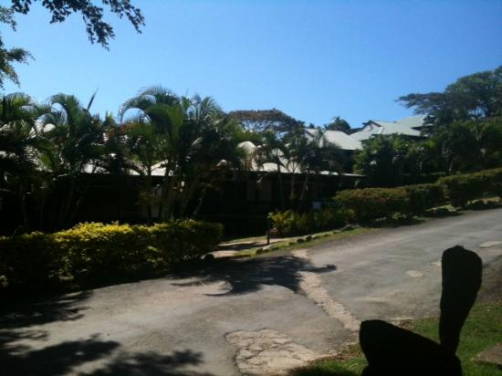 Anchorage Beach Resort : Beachfront villas - Ocean on left - each villa behind each other so there is no view unless in f