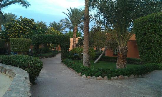 Nubian Village Hotel: территория утопает в зелени