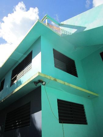 Hammock House Hostel : Hammock House