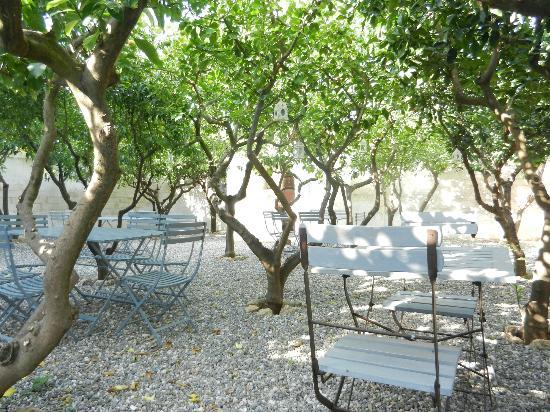 Masseria Don Luigi: schattiger Garten zum Verweilen