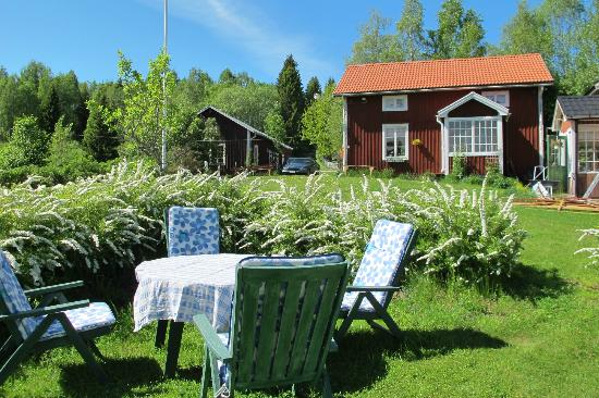 Ljustorp, สวีเดน: The garden in Summer