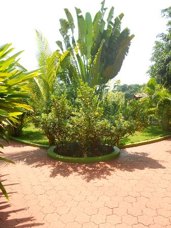 The Fern Gardenia Resort: Fern Gardenia