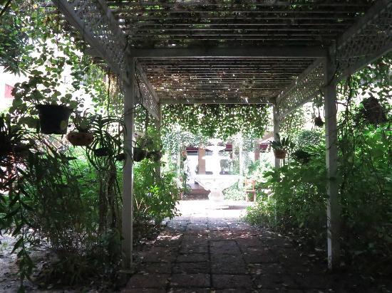 Feung Nakorn Balcony Rooms & Cafe: the garden
