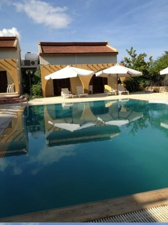 Five Fingers Holiday Bungalows: the pool area.