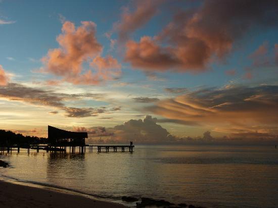 Kuramathi Island Resort: Rashidoo Divers