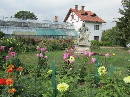 Cluj-Napoca, โรมาเนีย: Botanical Gardens