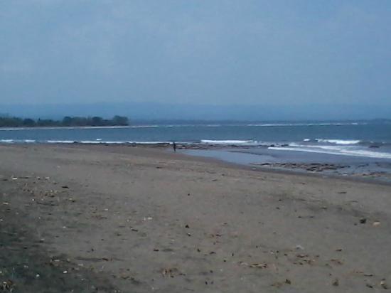 Villa Monyet Java: pemandangan dari depan villa