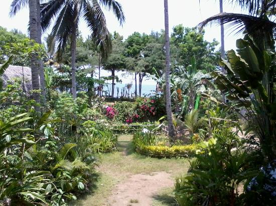 Villa Monyet Java: view halaman depan kamar