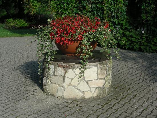 Livonija: the garden