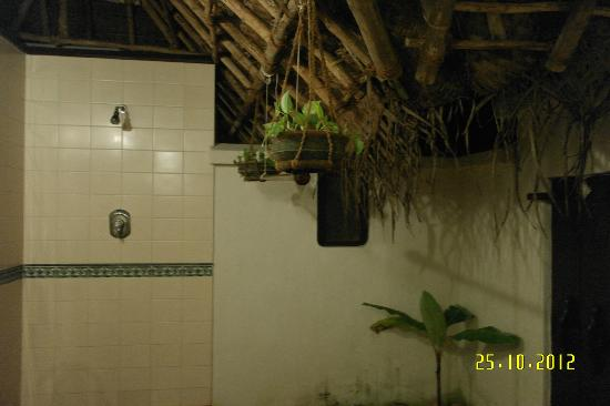 Marari Beach Resort: Outdoor bathroom
