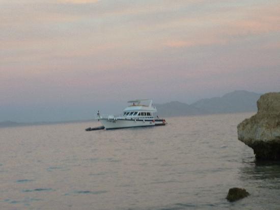 Dessole Pyramisa Sharm El Sheikh Resort: Tiran island