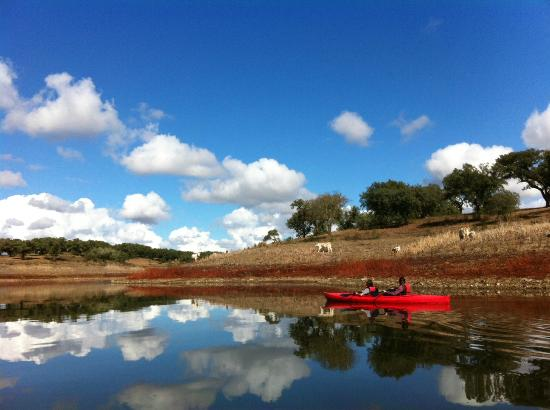 Monte do Serrado de Baixo: Kayaking through farm country