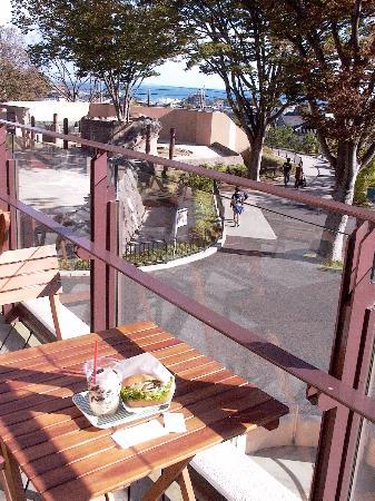 Kamine Park : ぞうさんエリアの近くにお洒落なカフェレストラン☆エレファントカフェができたみたいです。たべてきました。