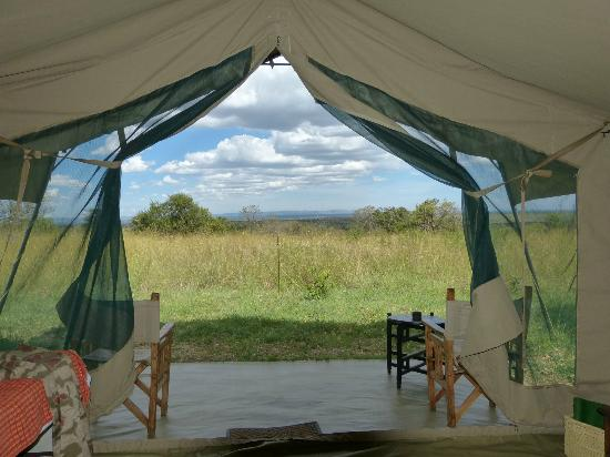 Ubuntu Camp, Asilia Africa: Day view from our tent