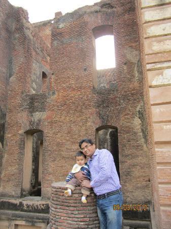 Dilkusha Kothi Palace: RUIN OF SIDE BUILDING