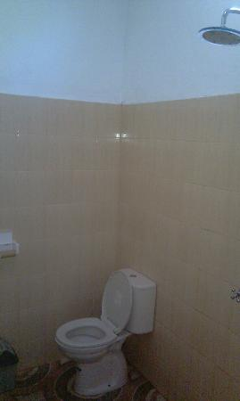 Ricel Homestay : this is the left side of bathroom (we took toilet tissue to clean our mess that's why it's empty