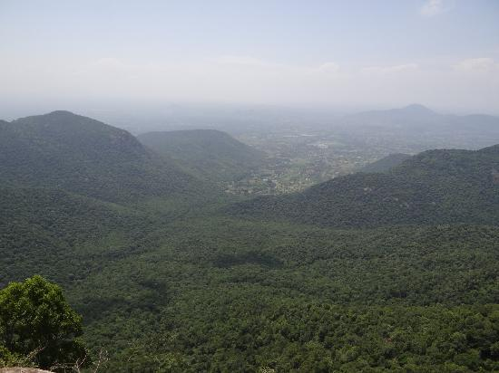 Yercaud, India: Keep looking!