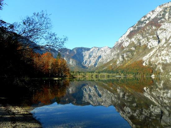 ‪هوتل جيزيرو: Lake Bohinj - Triglav National Park‬