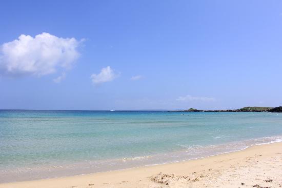 Ohama Beach: 石田町にある大浜海水浴場です。遠浅の海なのでお子様連れでも楽しめます\(^o^)/とっても綺麗ですよ♪