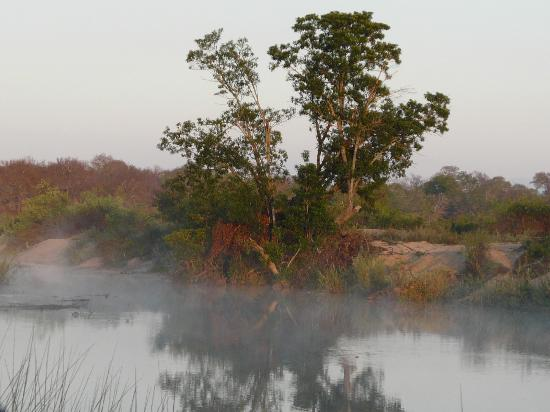 Inyati Game Lodge: Lovely bush country at dawn