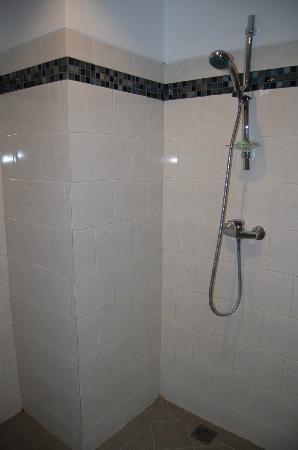 Aquarius Beach Hotel Sanur: отличный душ, в ванне всегда сухо
