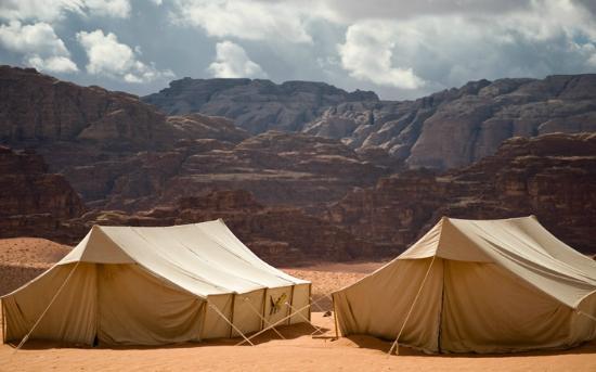 Wild Wadi Rum