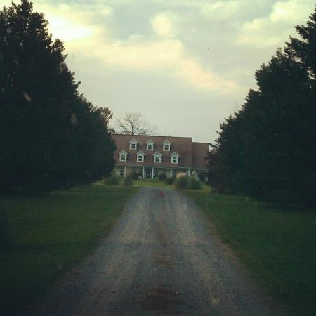 The Abbe House Inn: Magnificent view from the end of the driveway.