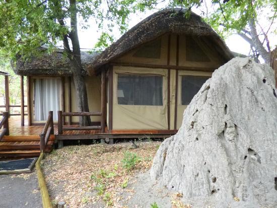 Sanctuary Chief's Camp: tente 11/12