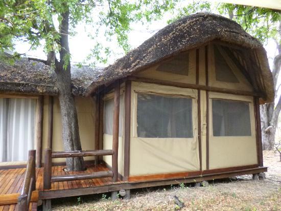 Sanctuary Chief's Camp: tente