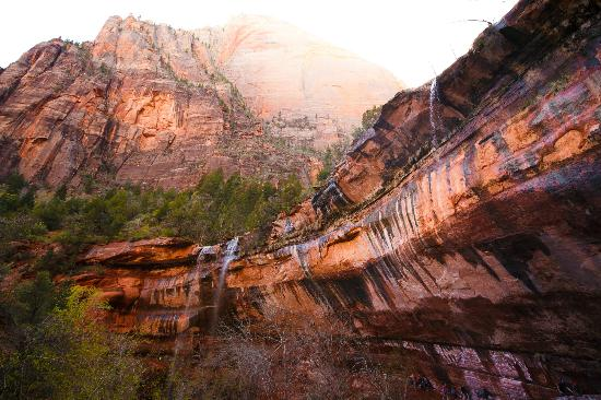 Zion Canyon Scenic Drive By Car