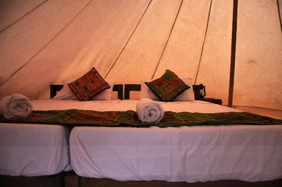 The Rock Camp - Petra : luxury tent