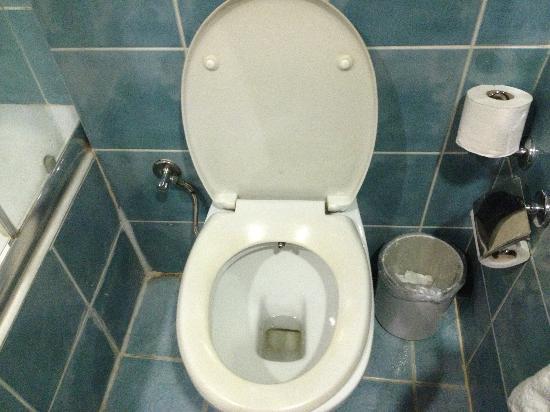 Lion Hotel: Toilet, no where near 4 stars
