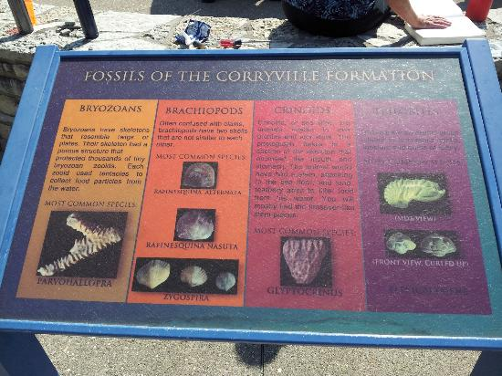 Trammel Fossil Park: Another of the educational signs.