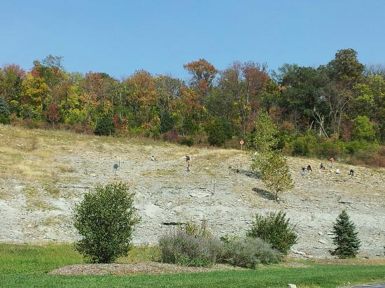 Trammel Fossil Park: ONe of the hills to climb