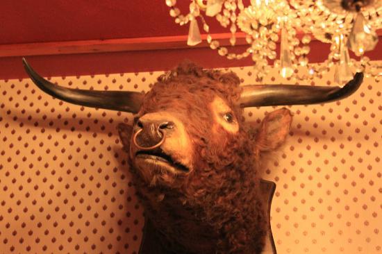 Moulin Hotel: one of many stuffed animals