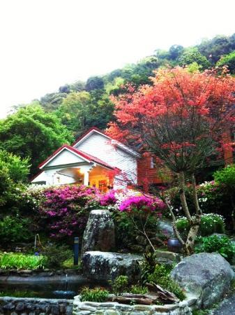 Fuyam Tourist Home: Beautiful Maple Tree~