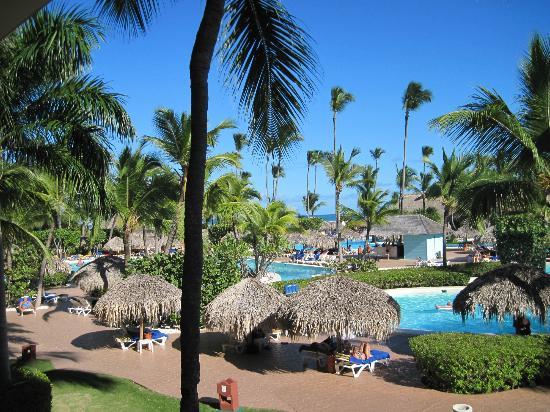 Iberostar Dominicana Hotel: jardin