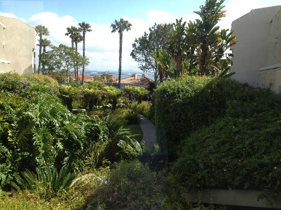 Loews Coronado Bay Resort: overlooking the bay