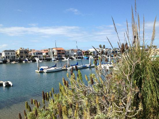 Loews Coronado Bay Resort: Bay Area