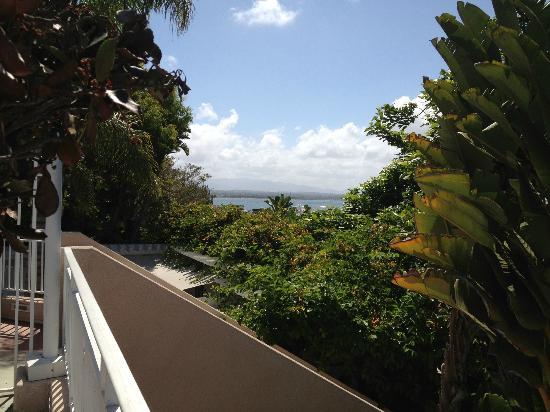 Loews Coronado Bay Resort: scenic views