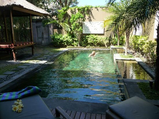 Ajanta Villas: nogmaals het zwembad