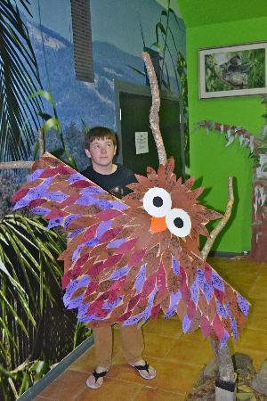 Currumbin Wildlife Sanctuary: Fun & Frolics