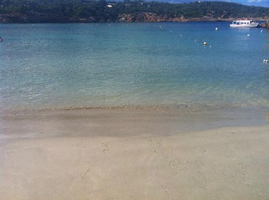 Apartments Del Rey: beach and the sea clear waters